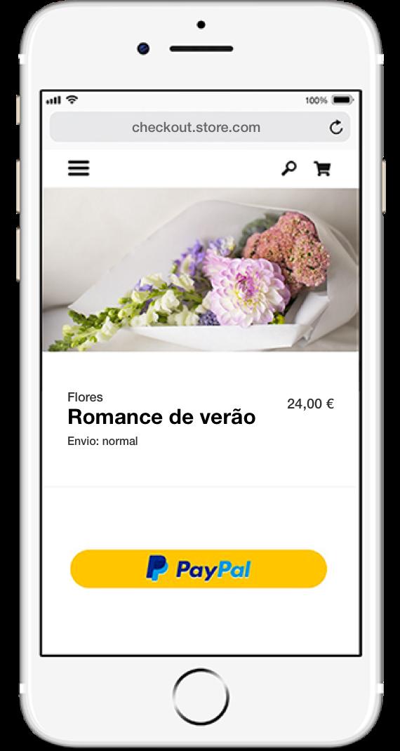 Paypal Pt