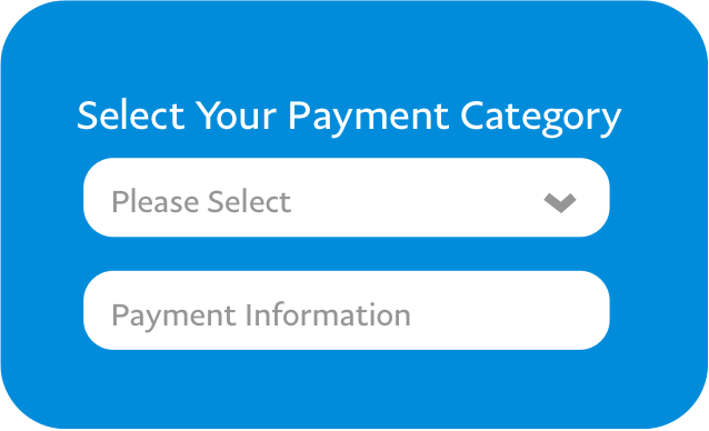 Select Your Payment Category