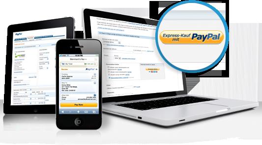 Paypal Lösungen Für Einsteiger Und Profis